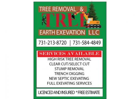 TREE REMOVAL AND EARTH EXEVATION